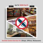Termite Control Up To 5000 Sq. Ft.